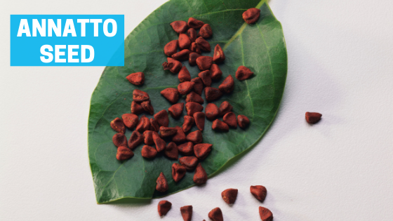 annatto seeds achiote seeds