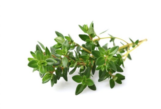 Boost Your Immune System with These Herbs thyme