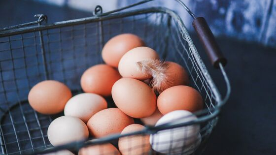 eggs are Best sources of protein